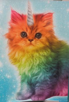 Image result for pictures of cats and unicorns