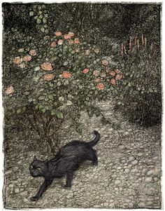 """Advancing by soft steps came Tomasso the cat. """"Good-night"""" illustrated by Arthur Rackham (1907)"""