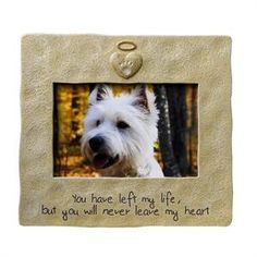 1000 Images About Pet Sympathy Gift Ideas On Pinterest