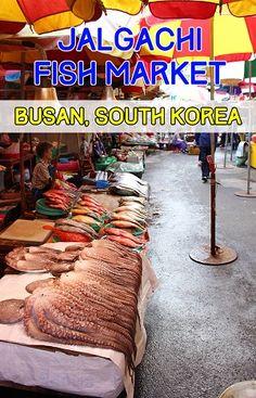 jalgachi fish market in busan pin