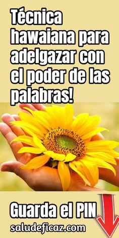 Cintia Hernández Carvajal Cintiahernndezc Perfil Pinterest
