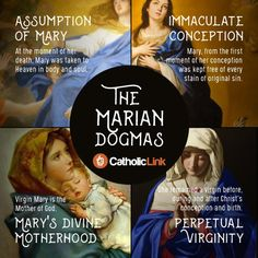 Catholic quotes, infographics, memes and more resources for the New Evangelization. Infographic: The 4 Marian Dogmas.