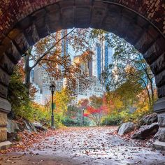 """newyorkcityfeelings: """"Inscope Arch in Central Park 📸 Noel YC """" New York Central, Central Park, Beauty Around The World, Around The Worlds, Southern Cone, Nyc Fall, Liberty Island, Washington Square Park, New York Life"""