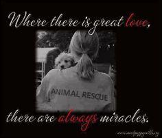 Miracles....