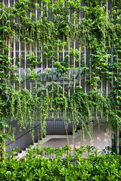 Plants climb all over vertical concrete louvres surrounding the facades of this holiday resort on the Vietnamese coastline designed by Vo Trong Nghia Architects.
