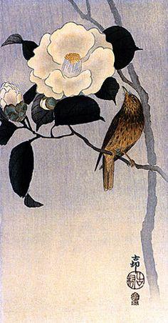 """Songbird on Camellia"" Big Japanese Art Print by Koson Asian Art Japan | eBay"