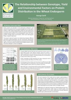 Winning research poster 2015