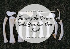 Bone Magic Series: Throwing the Bones + Build Your Own Bone Tarot Dermestid Beetles, Witchcraft Symbols, Hag Stones, Baby Witch, Work With Animals, Modern Witch, White Witch, Spiritual Guidance, Animal Skulls