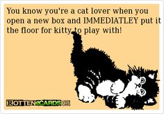 Guilty. I also keep a stash of boxes to rotate through, so she doesn't get bored...