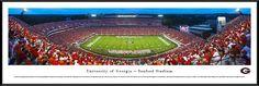 Georgia Bulldogs Panoramic Picture - Sanford Stadium
