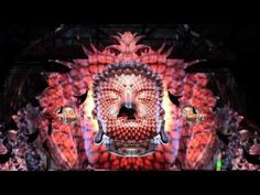 Tipper & Android Jones at Infrasound 2013 - YouTube