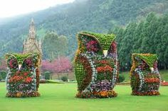 A photo of giant owl garden sculptures in Nantou County, Taiwan took the web by storm. See how animal topiaries can give a garden some eclectic pizazz.