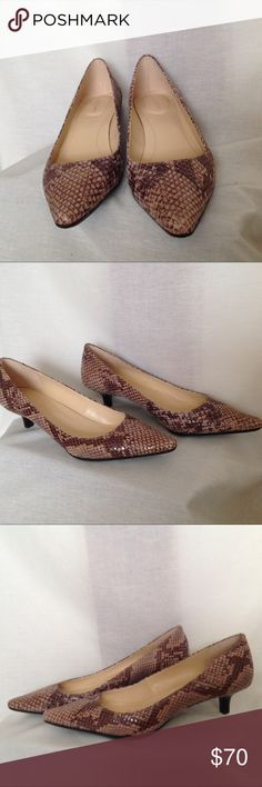 """New Calvin Klein Taupe Snake Print Pump Diema Classic Python Print pointed toe. Never Worn, mint condition.  1 3/4"""" Heel, 10"""" Length and 3"""" Wide. #002 Calvin Klein Shoes Heels"""