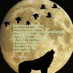 #pesca  #caza  #luna