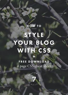 How to Style Your Blog with CSS + a Four Page CSS Cheat Sheet. Learn coding for beginners and how to code your website with these tips. Repin to customize your blog later!