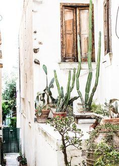 What Katie Ate - Amalfi Coast and Capri