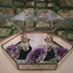 Check out this beauty! It is a crystal garden AND a functional jewelry box oh.em.gee!!