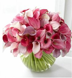 Calla Lily Love Finesse them with style and sophistication of these blushing blooms. Miniature calla lilies cluster together in a whimsical and soft display of lavenders and pinks. Lys Calla, Calla Lillies, Calla Lily, Beautiful Flower Arrangements, Floral Arrangements, Beautiful Flowers, White Flowers, Silk Flowers, Deco Floral