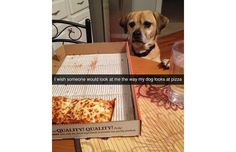 25 Hilarious Snapchats Anyone Who Loves Animals Must See (Slide #1) - Pawsome