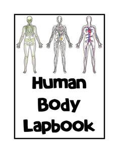 human-body-unit-and-lapbook-0.jpg 510×660 pixel
