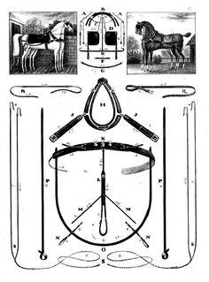 """Complément à l'article """"Le régulateur du sellier"""". Horse Harness, Horse Drawn, Horses, Black And White, Tack, Accessories, Side Dishes, Horse Tack, Horse"""