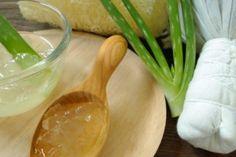 Ecco la vera ricetta per fare in casa il gel naturale di Aloe Vera. TRE SEMPLICI STEP