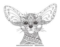 Fennec fox. Hand-drawn fennec with ethnic floral doodle pattern. Coloring page - zendala, design for spiritual relaxation for adults, vector illustration, isolated on a white background. Zen doodles.