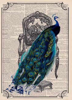 Whimsical Peacock in Turquoise and Violet on A Victorian Chair: Vintage  Dictionary Page Art Print. $9.00, via Etsy.