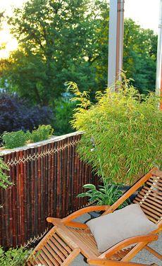 Lovely Bambus Nat rlicher Sichtschutz