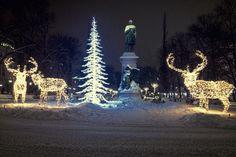 Winter wonderland. #snow #reindeer #christmastreeglow #grafter #goodmorning #getcreative #winter