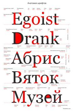 Font-anatomy.png (2000×3000)