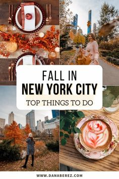 Top things to do this fall in NYC. There are so many cute and fun things do during Fall in NYC. Here are some of the best things to do in autumn this year. (And some are super instagrammable)! NYC Travel Guide | NYC Fall York Things To Do, Fun Things, Nyc Fall, Boston Travel, Visiting Nyc, New York City Travel, Family Road Trips, Barcelona Travel, United States Travel