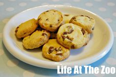 easy chocolate chip cookies - no egg recipe! Great for cooking with the kiddos in class (allergy friendly recipe)