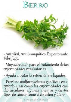 Propiedades del CEDRON o hierba luisa http://www.botanical