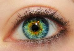 Those are like my eyes