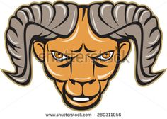 Illustration of a ram head facing front set on isolated white background done in cartoon style.