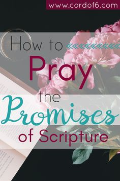Don't let the fear of not knowing how to pray keep you from prayer. Here's a guide to learn how to pray the promises of Scripture. Christian Living, Christian Faith, Christian Women, Christian Quotes, Beautiful Words, Prayers For Strength, Prayer Room, Prayer Closet, Life Quotes Love