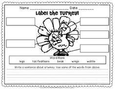Turkey activities:  FREE Label the turkey worksheet.
