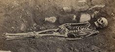 Squelettes trouvés dans les fouilles du Mont Saint-Michel [ca 1875] #MusHalloween Mont Saint Michel, Animation, Painting, Art, Skeletons, Art Background, Painting Art, Kunst, Paintings