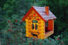 feeder for the birds