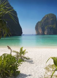 Thailand's Phi Phi island near Phuket (where The Beach was filmed). Best beach ever! Phi Phi Island, Beaches In The World, Places Around The World, Dream Vacations, Vacation Spots, Jamaica Vacation, Vacation Ideas, Isla Phi Phi, Places To Travel