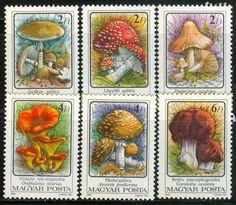 HUNGARY-1986. Poisonous Mushrooms  | eBay