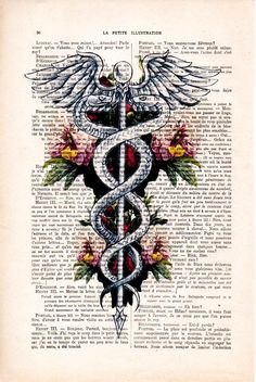 Caduceus Symbol - 2 Anatomy Print on 1900s antique page. The genuine antique paper I use comes from 1900s original antique french book page. The