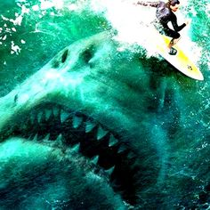 Original Motion Picture Soundtrack (OST) from the movie Meg (2018). Music composed by Harry Gregson-Williams.    #Meg Soundtrack by Harry Gregson-Williams #movie #thriller #FilmScores #MegMovie #Meg2018 #shark