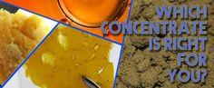 #M4L #Edibles #PotEdibles #WeedEdibles #CannabisEdibles #MarijuanaEdibles #Marijuana #Cannabis #Marihuana #Ganja #Pot #Weed #Kush #MedicalMarijuana #MedicalCannabis #LegalizeIt #Cronic #MMJ #Colorado #Alaska #Nevada #Maine #Oregon #Washington #Florida #California #Massachusetts #Michigan #cbd #thc #weed #marijuana #medicalmarijuana #prop215 #edibles #sanfrancisco #walnutcreek #fresno #oakland #sacramento #auburn #tahoe #truckee #medibles #distillate #710society #ggs #dab #dabs #dabbersdaily…