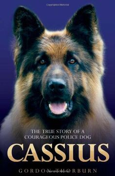 Cassius, the True Story of a Courageous Police Dog by Gordon Thorburn http://www.amazon.co.uk/dp/1844549852/ref=cm_sw_r_pi_dp_1IGsvb0Z5YJMB