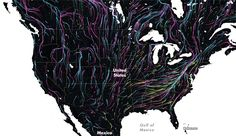 Beautiful map shows the future of animal migration
