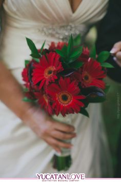 Ramo de novia en color rojo intenso #red #bouquet #bride #Wedding #YUCATANLOVE