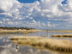 #Etosha Pan #Namibia-  Namibia's most renown national park.    Explore Etosha : http://www.namibiatourism.com.na/Etosha-National-Park/  