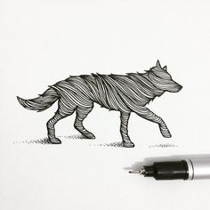 """'WOLF', sketch of the day ✏️"""